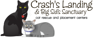 Crash's Landing Cat Rescue & Placement Center